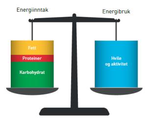 Energibalanse 1