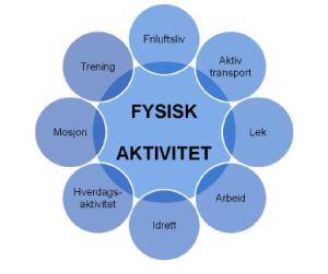 fysisk_aktivitet_sso